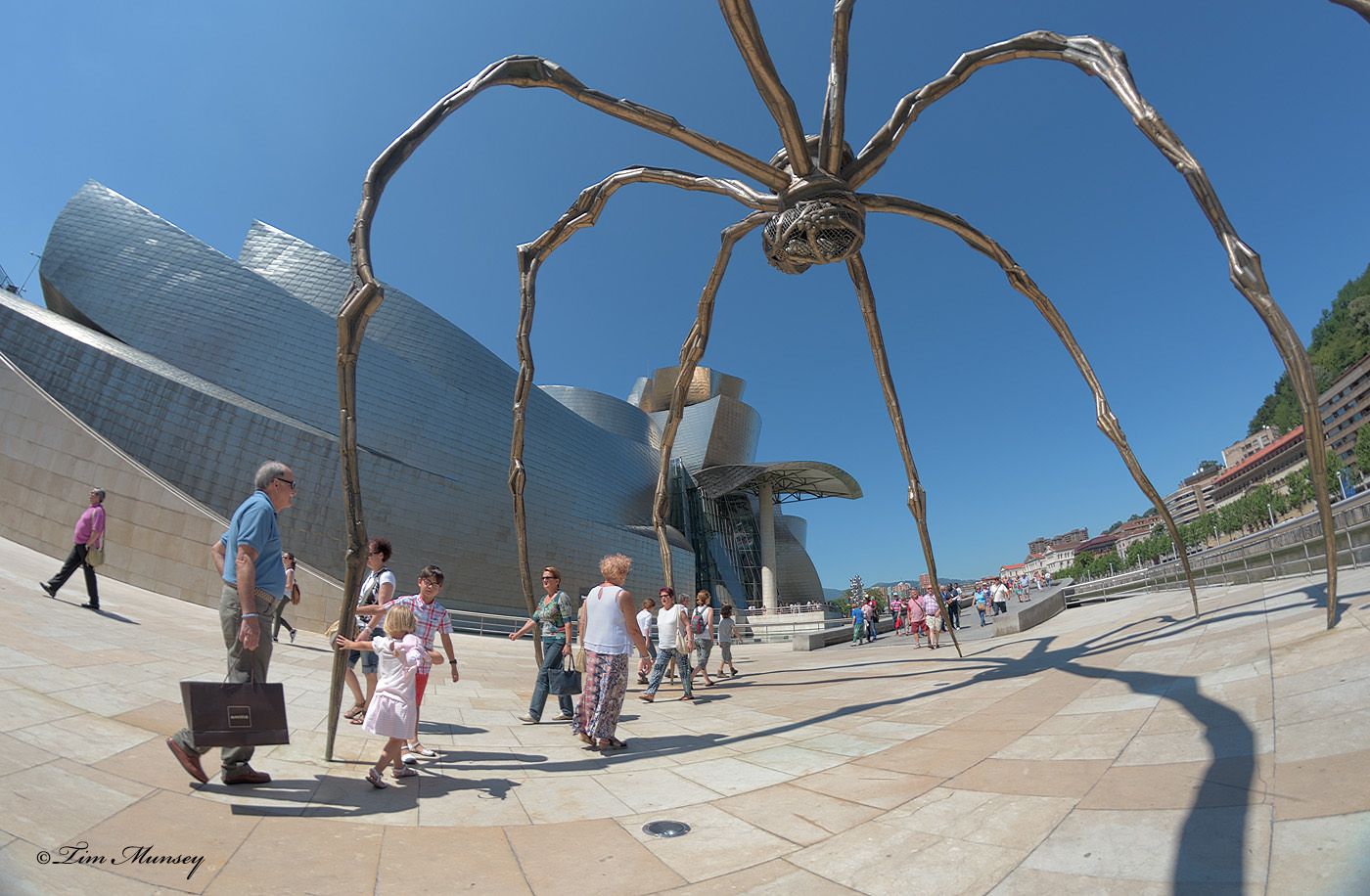 Spider of Bilbao